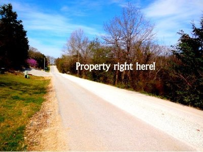 Branson Residential Lots & Land For Sale: Tbd W Rockford Drive