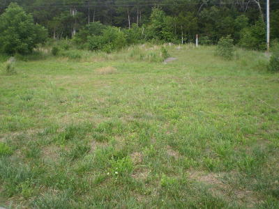 Branson Residential Lots & Land For Sale: Tbd Anna Lane