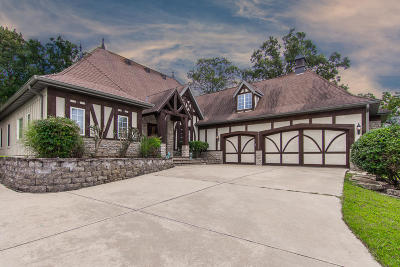 Branson Single Family Home For Sale: 148 South Drive