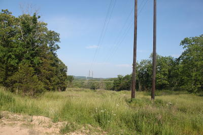 Branson Residential Lots & Land For Sale: 260 Shepherd Of The Hills Exp