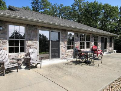 Branson Single Family Home For Sale: 195 Highpoint Circle