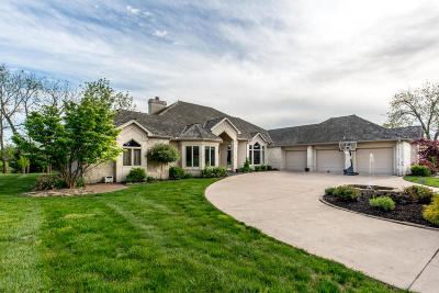 Springfield Single Family Home For Sale: 3980 East Eaglescliffe Drive
