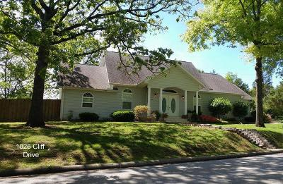 Branson Single Family Home For Sale: 1026 Cliff Drive