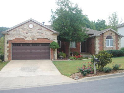 Branson MO Single Family Home For Sale: $259,900