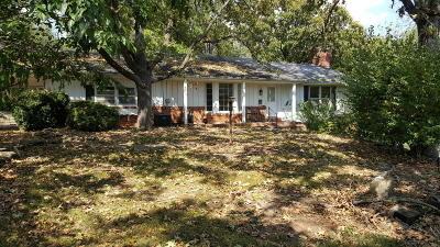 Rogersville Single Family Home For Sale: 3581 East Farm Road 186