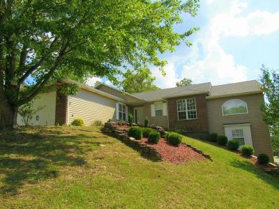 Branson Single Family Home For Sale: 215 Horizon Drive