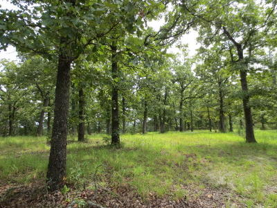Branson MO Residential Lots & Land For Sale: $895,000