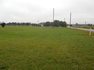 Marionville Residential Lots & Land For Sale: Tbd Western St