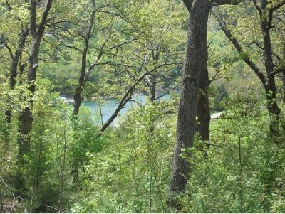 Blue Eye Residential Lots & Land For Sale: Tbd Treasure Hunt Trail
