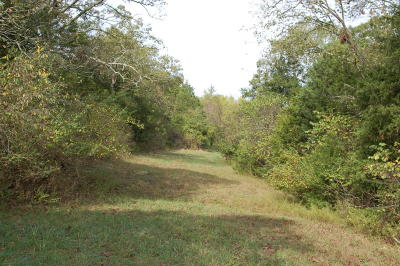 Forsyth Residential Lots & Land For Sale: 275 Tower Road