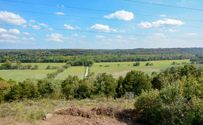 Forsyth Residential Lots & Land For Sale: 791 State Hwy Y