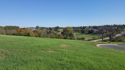 Springfield MO Residential Lots & Land For Sale: $99,900