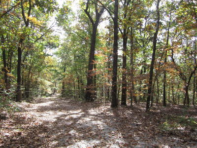 Lampe Residential Lots & Land For Sale: Pokeberry. Lane