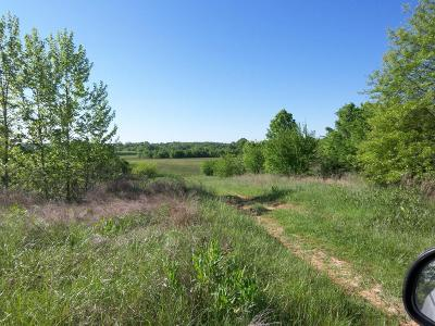 Osceola Residential Lots & Land For Sale: Hwy 54