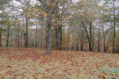 Cape Fair Residential Lots & Land For Sale: Lot 154 Panorama Drive