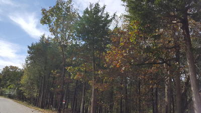 Cougar Trails East Residential Lots & Land For Sale: 222 Cougar Trail East