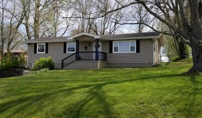 Ozark Single Family Home For Sale: 482 McLean Road