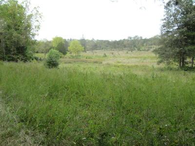 Saddlebrooke Residential Lots & Land For Sale: Tbd Saddlebrooke Drive