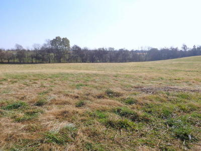 Battlefield Farm For Sale: 5300 West Republic Road