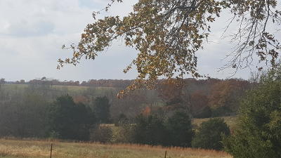 Ozark Residential Lots & Land For Sale: 2825&2865 North State Highway Nn