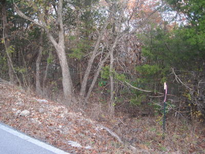 Reeds Spring Residential Lots & Land For Sale: Tbd White Rockbluff Drive