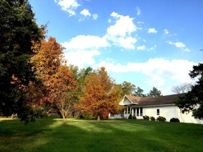 Rogersville Single Family Home For Sale: 4522 State Hwy J