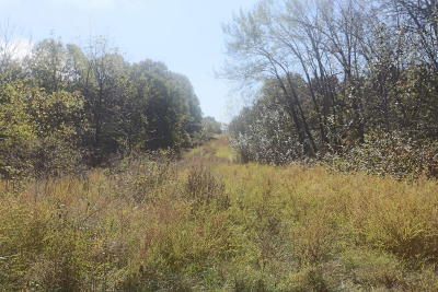 Reeds Spring Residential Lots & Land For Sale: Tbd Red Rock Road