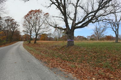 Reeds Spring Residential Lots & Land For Sale: Tbd East Gate