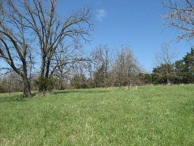 Willard Residential Lots & Land For Sale: Tract 4 North State Hwy Hh