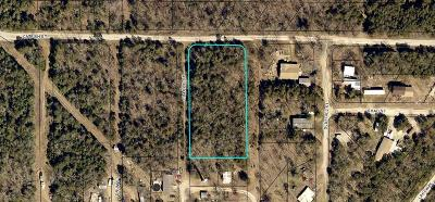 Kissee Mills Residential Lots & Land For Sale: Catfish Street