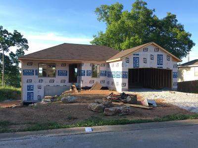 Ozark MO Single Family Home For Sale: $179,900