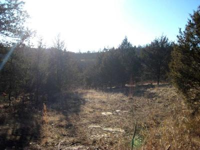 Branson West Residential Lots & Land For Sale: Lot 48 Bedrock Circle