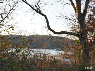 Branson West MO Residential Lots & Land For Sale: $89,900