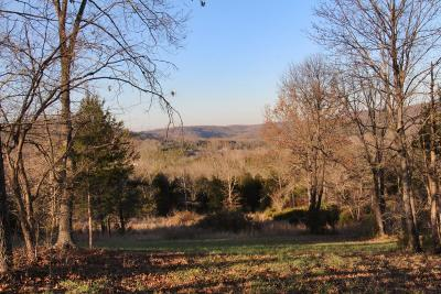 Saddlebrooke Residential Lots & Land For Sale: 180 & 184 Ranch Road