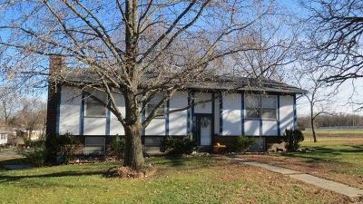 El Dorado Springs MO Single Family Home For Sale: $85,000