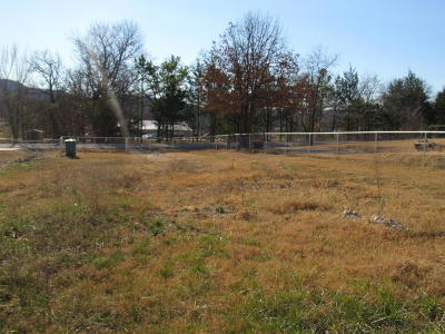 Branson Residential Lots & Land For Sale: 186 Plaza Drive