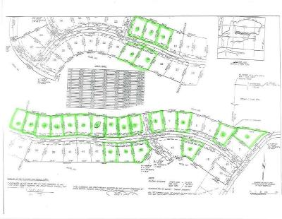 Cape Fair Residential Lots & Land For Sale: 23 Lots Hanging Branch Ridge Road