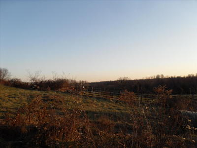 Clever Residential Lots & Land For Sale: 872 Mount Carmel Road