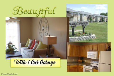 Branson MO Condo/Townhouse For Sale: $72,000