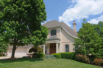 Springfield Single Family Home For Sale: 2252 South Oakbrook Avenue