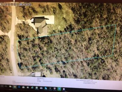 Hidden Meadow Residential Lots & Land For Sale: 595 Meadow Lane Lane