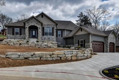 Branson Single Family Home For Sale: 152 South Drive