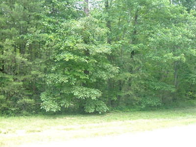 Branson  Residential Lots & Land For Sale: Lot 6 Stone Ridge Drive