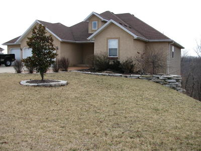 Branson Single Family Home For Sale: 282 Southview Drive