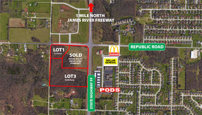Commercial For Sale: West Republic Road