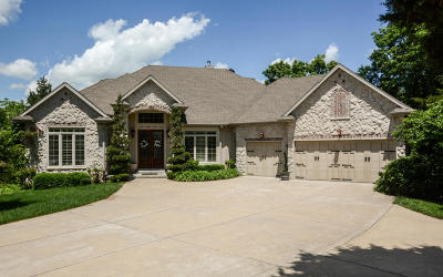 Branson West, Reeds Spring Single Family Home For Sale: 520 Silverwood Place