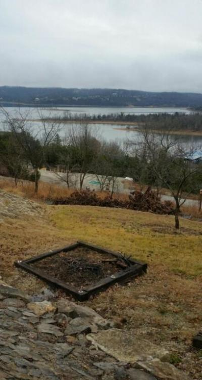 Blue Eye Residential Lots & Land For Sale: 145 Shoshone Point