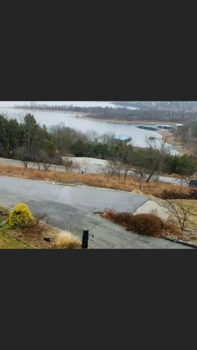 Blue Eye Residential Lots & Land For Sale: 125 Shoshone Point