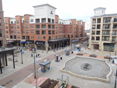 Condo/Townhouse For Sale: 10314 Branson Landing Blvd #314