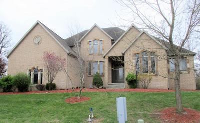 Monett Single Family Home For Sale: 307 Taylor Street